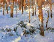 latewinterlight-clashley-oil-10x8-3.jpg