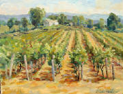 vineyard-clashley-oil.jpg